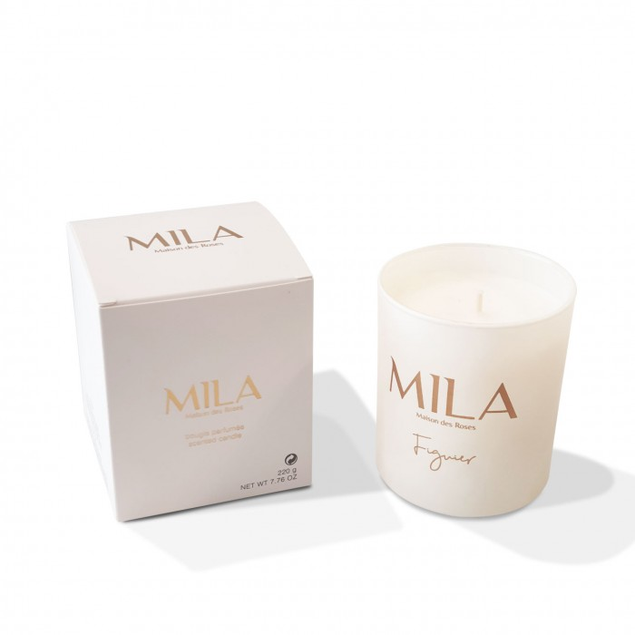 Scented Candle - Figuier - 210g